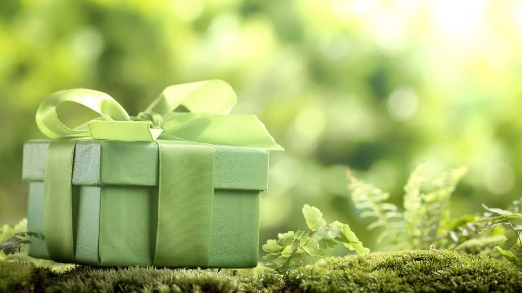 sustainable gifts for everyone on your list