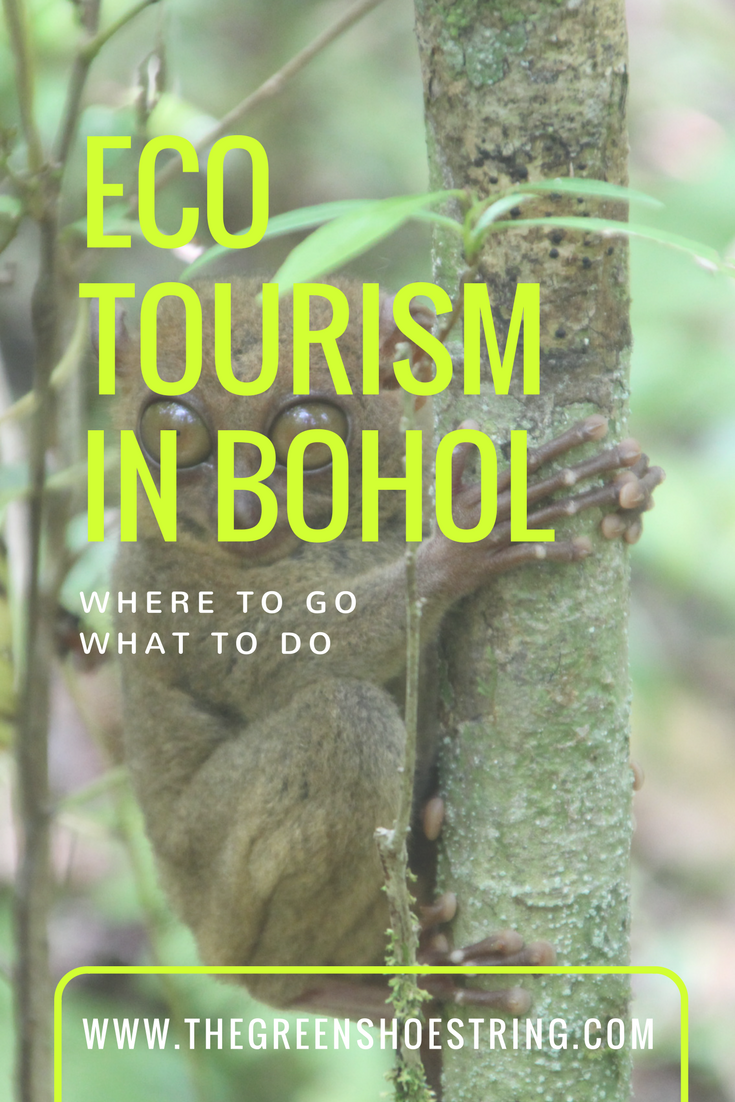 eco tourism on bohol