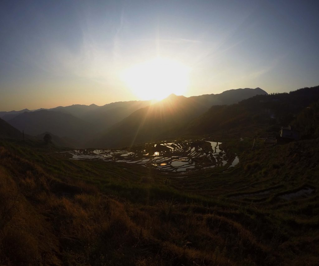 sunset over rice terraces in fujian province