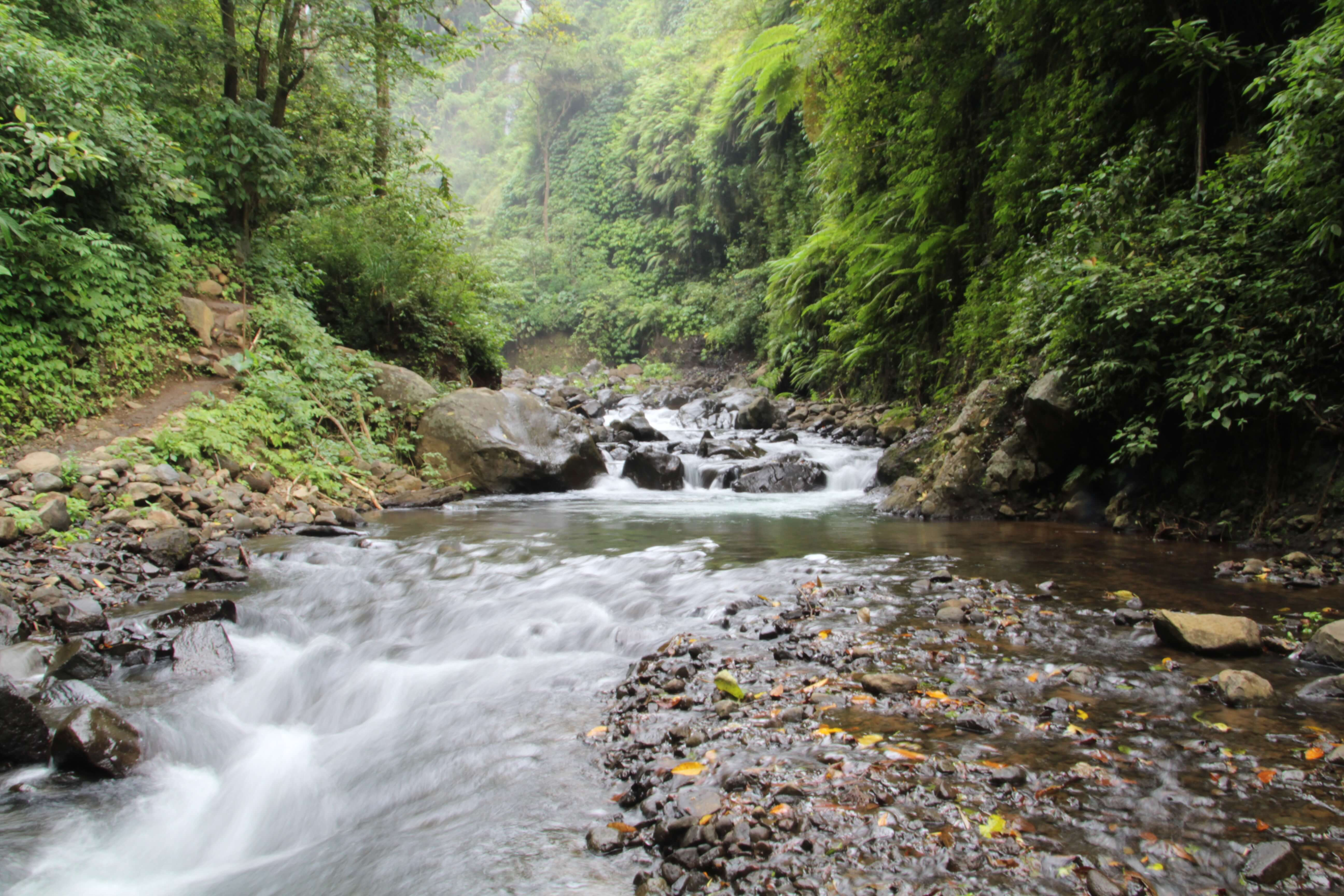 river at base of sekumpul falls bali
