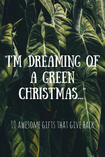 10 sustainable christmas gifts pinterest graphic