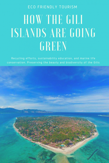 How the Gilis are Going Green