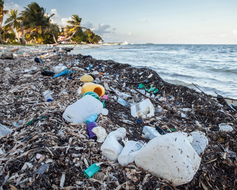lastic Waste washed up at shore, Turneffe Atoll, Caribbean, Belize